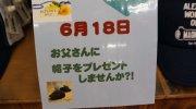 otakaraichibankanmiehonten201706-151
