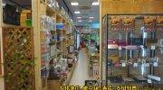 マンガ倉庫八代店29