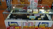 shizuokakanteidanyahataten2019-063b