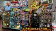 shizuokakanteidanyahataten2019-068b