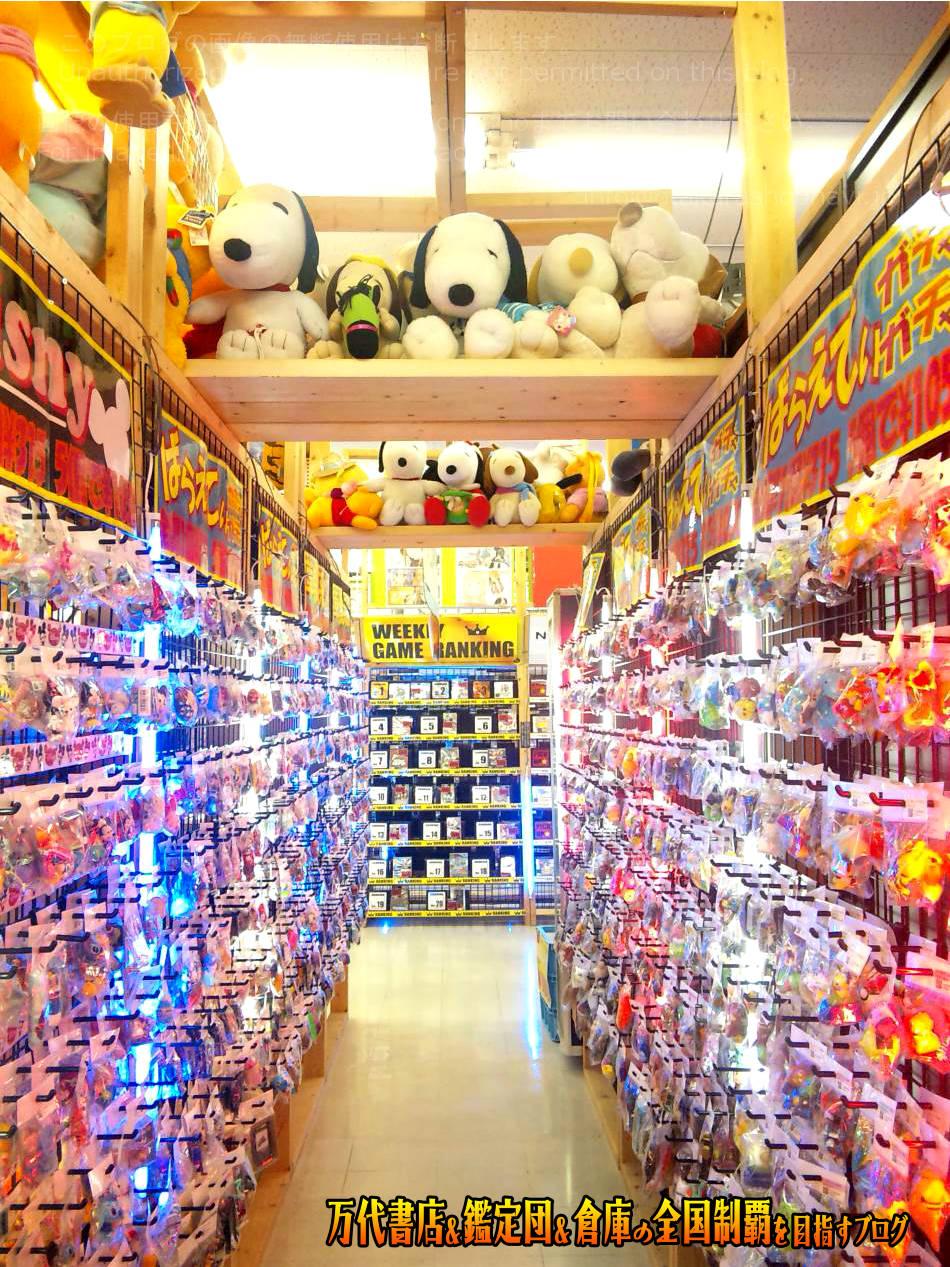開放倉庫byドッポ寒河江店201012-9