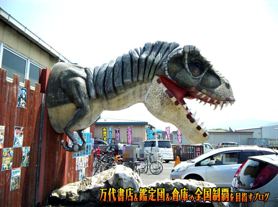 開放倉庫香芝店201005-4
